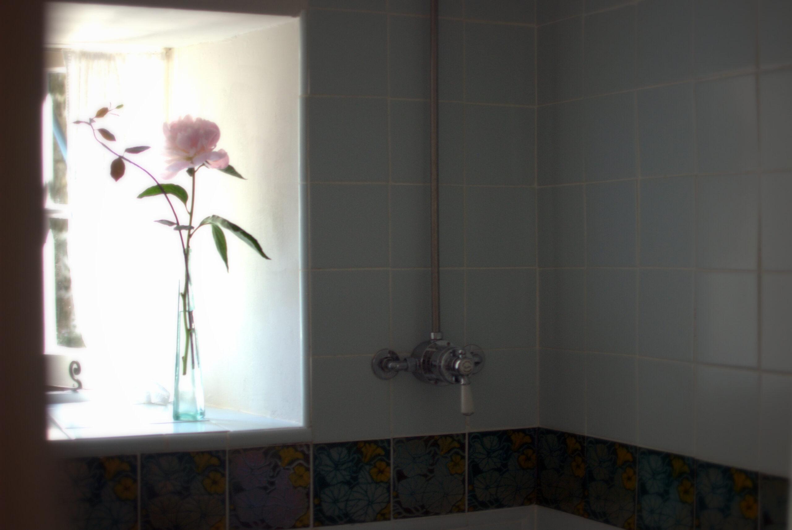Peony in window Traditional Mira Shower