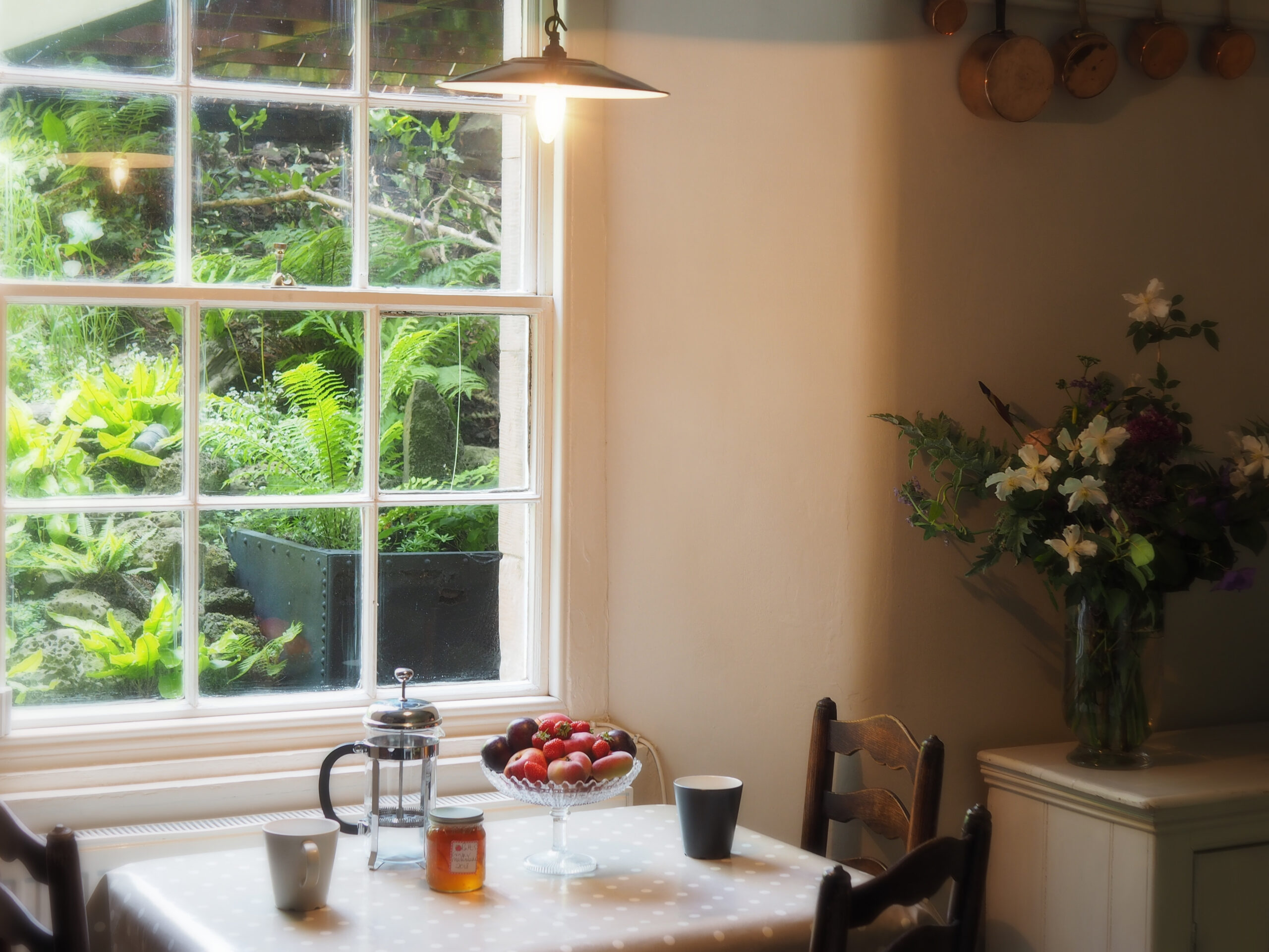 The-fern-garden-outlook-from-the-kitchenette